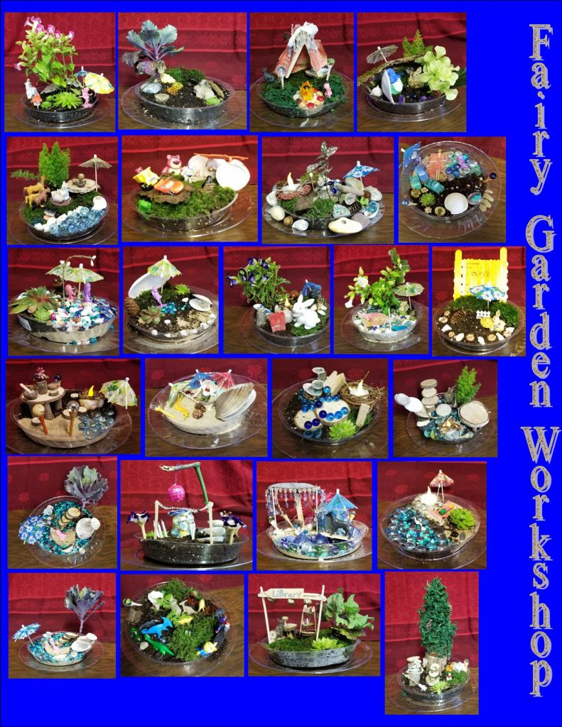 Collage of Fairy Gardens created at our Fairy Garden Workshop.